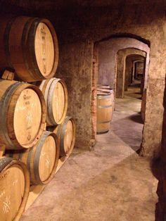 Cellar of Les Cousins, Priorat