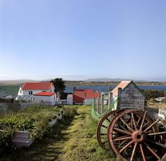 Links to short article about the Falkland Islands