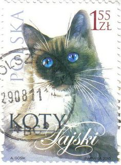 Timbre Pologne chat siamois (comme ma petite Frimousse) - Postage stamp designed by Andrzej Gosik - Poland, 2010