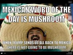 66 Trendy Ideas For Funny Memes Mexican Humor Life Mexican Words, Mexican Problems, Trump Wall, Mexican Humor, Mexican Quotes, Mexican Funny, Mexican Stuff, Funny Quotes, Funny Memes