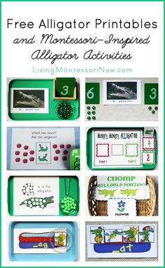 Lots of free alligator printables and Montessori-inspired activities using alligator printables (includes a number of printables and activities with the greater-than less-than alligator)