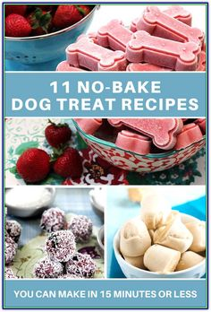 Do you love making Dog Treats? Making Homemade Dog Treats is even more simple when you don't have to bake anything! Check out these 11 Super Easy Dog Treat Recipes that you can make in 15 minutes or less out of common foods from your pantry. No Bake Dog Treats, Frozen Dog Treats, Diy Dog Treats, Healthy Dog Treats, Summer Dog Treats, Homemade Horse Treats, Peanut Butter Dog Treats, Pumpkin Dog Treats, Puppy Treats