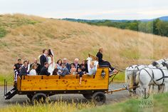 Horse and carriage ride with the wedding party  Photography by Images by Berit   NYC Wedding Photographer   NJ Wedding Photographer   Wedding Party Portraits #wedding #weddingpartyphotos #weddingphotoidea #horsedrawncarriage #imagesbyberit