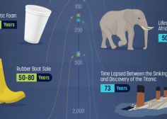 Here's How Long Your Trash Will Hang Around After You're Dead