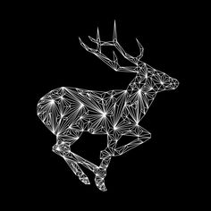 Diamond deer From Nick Vlow #illustration #animal #geometry