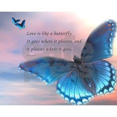 Butterfly Poems, Butterfly Pictures, Butterfly Art, Butterfly Symbolism, Butterfly Tattoo Meaning, Blue Butterfly Meaning, Butterfly Love Quotes, Quotes About Butterflies, Butterfly Spirit Animal