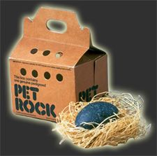 Did you have a pet rock in the 70's?