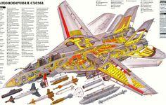 F-14 Aircarft Cutaway