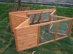 rabbit run - Google Search