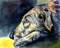 Paws To Reflect Irish Wolfhound Print By Lyn Cook