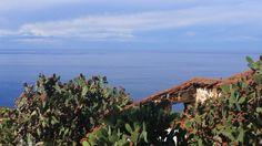 El Sauzal. Islas Canarias. España