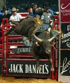 Adriano Moraes on Mossy Oak Mudslinger.nobody rides like Adriano! Rodeo Cowboys, Real Cowboys, Rodeo Events, Professional Bull Riders, Bucking Bulls, Rodeo Life, Charro, Bull Riding, Baby Animals
