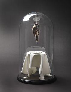 Communion – Polly Morgan, 2011 Communion Glass, wood, silk, silver, resin, taxidermy 30cm diameter x 60cm