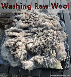 Learning to Felt - Raw Wool (Welsh Mountain Sheep) ~ Fleece ready to be washed. http://www.helliescorner.com/?p=4964
