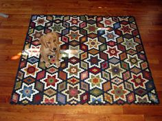 - Plain and Simple - great quilt....very cute puppy!