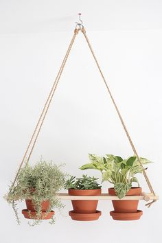 Raise your plants in the air with these creative and modern looks.