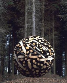 ♂ Wood ball circle by Jae Hyo Lee environmental land art