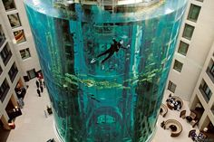AquaDom - Berlin, Germany - not been but how cool?