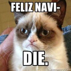 haha! @Laurel AbdallaChristmas grumpy cat