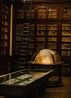 """Old globe in the library of the Istituto delle Scienze, Palazzo Poggi, Bologna (Italy). Library Room, Dream Library, Photo Library, Old Globe, Old Libraries, Bookstores, Public Libraries, Beautiful Library, Reading Room"