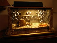 "My vintage cast iron ""Jewell""  7 gal. tank set up for a tarantula."