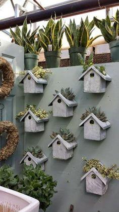 A Garden for the Birds
