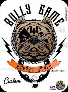 Bully Game - Street Style * For Sale Custon by Ricardo Pires