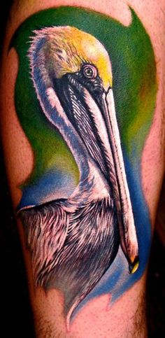 pelican tattoo