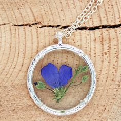 Montana Wildflower Living Locket with Branch Frame