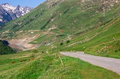 Cows graze off the side of the road at Col du Glandon in the Dauphiné Alps, a quintessentially French scene.