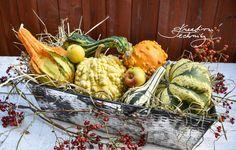 Podzimní truhlíky a podzimní výzdoba k podzimu patří. Hledáte inspiraci na podzimní truhlík? Vytvořte si svůj originální. Podzimní dekorace rady a nápady. Chcete si vyrobit originální podzimní dekorace? Podzim je ideálním obdobím právě na kreativní tvoření. Podzimní výzdoba. Výzdoba truhlíků. Nápady na podzim. Podzimní tvoření. Podzimní dekorace rady a nápady. │Halloween dýně│halloween│halloween dekorace│#podzim #halloween #dekorace #dýně #DIY #návod #inspirace Diy Halloween Decorations, Autumn Decorations, Fall Decor, Ale, Vegetables, Ale Beer, Vegetable Recipes, Fall Decorating, Veggies