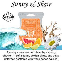 Sunny-and-Share-Scentsy-Bar