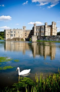 Leeds Castle, Kent - Such a fun place to be!