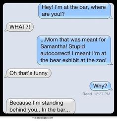 Funny Text About Bar vs. Bear