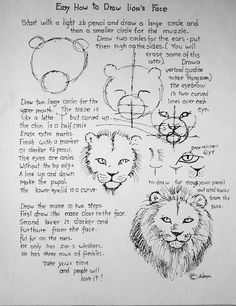 How to draw a lion's face worksheet and drawing lesson.(many step by step drawing guides)