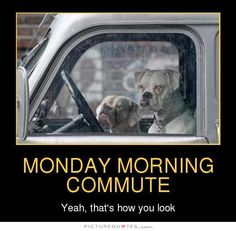 Monday morning commute. Yeah, that's how you look. Picture Quotes.