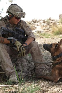 Bryan Manthey, Weapons Company, Battalion, Marine Regiment, Regimental Combat Team and a dog named Zzisko rest during a patrol. Manthey and his military working dog were searching for improvised explosive devices. Military Working Dogs, Military Dogs, Police Dogs, Military Police, Military Spouse, Military Service, Usmc, Marines, War Dogs