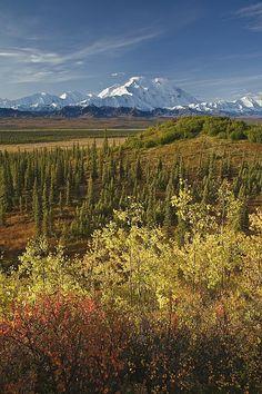 Mt. McKinley, Denali National Park, Alaska