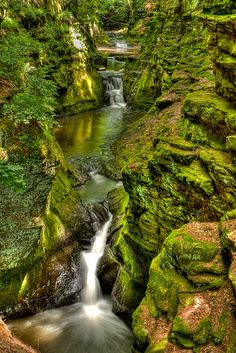 https://flic.kr/p/9XPVyV | Pewits Nest | Just a short drive away from the waterparks of Wisconsin Dells is Baraboo, Wisconsin which has some pretty amazing natural areas.  Whereas Devils Lake State Park is the big attraction, Pewits Nest State Natural area is a local gem.  I was pretty amazed when I got to the entrance and discovered there was nothing but tall grasses and farmland.  A short walk away the landscape transforms into a gorge filled with a flowing stream.    It took awhile to…