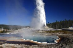 Nationals Wonder - Half of the world's Geiser is in Yellowstone National Park @ Wyoming, Idaho and Montana, USA