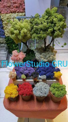 스칸디아모스 대구 대리점 대구 스킨디아모스 주문 스칸디아모스 디자인 및 샘플작업 스칸디아모스 인테리... Island Moos, How To Preserve Flowers, Nature Crafts, Topiary, Stone Art, Flower Crafts, Bonsai, Floral Arrangements, Greenery