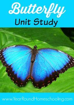 Butterfly Unit Study - http://www.yearroundhomeschooling.com/butterfly-unit-study/