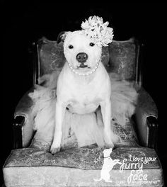 I want to do this to my Tessa so bad! Esp on my wedding day