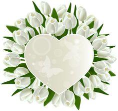 Fehér tulipánok szív dekoráció PNG Clipart kép
