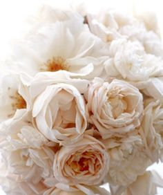 Some peonies to make your day that much more lovely. ~