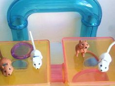 Littlest Pet Shop 1990s .. I remember dragging the magnetic wand to make them crawl threw it hahaha.