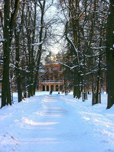 Winter in Ludwigsburg Palace, Germany