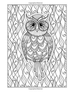 Adult Coloring Pages Books Owls Zentangle Paisley Doodles Colouring In Vintage Zentangles