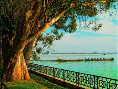 Travel to kunming Dianchi Lake, you can Try to Learn Chinese language with native Chinese people,you can choose Chinese language school - Hanbridgemandarin.com !!   http://www.hanbridgemandarin.com/course/chinese-language-course