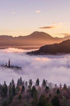 desktop backgrounds, fog, foggy